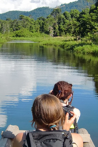 Tours: Chuncho Macaw Clay lick & Sandoval Lake 4D/3N